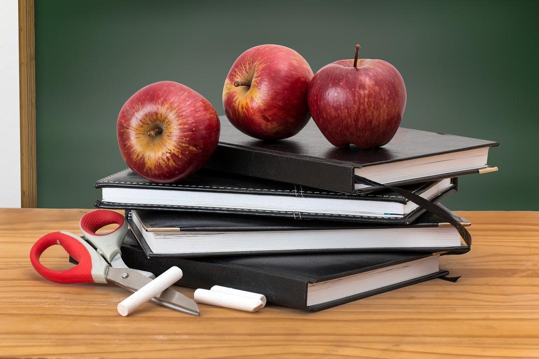 Como Gary Craig vê todos estes cursos que  se dizem autorizados a ensinar o EFT?